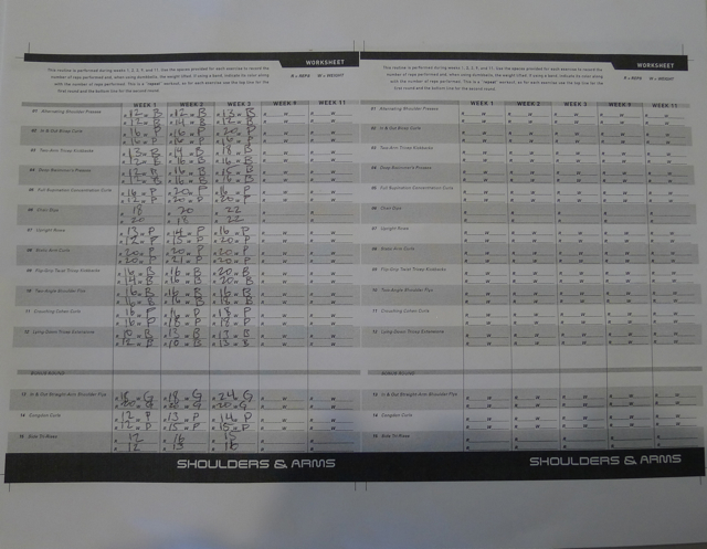 Casey Friday P90X Lifestyle Day 17 - Workout Sheet